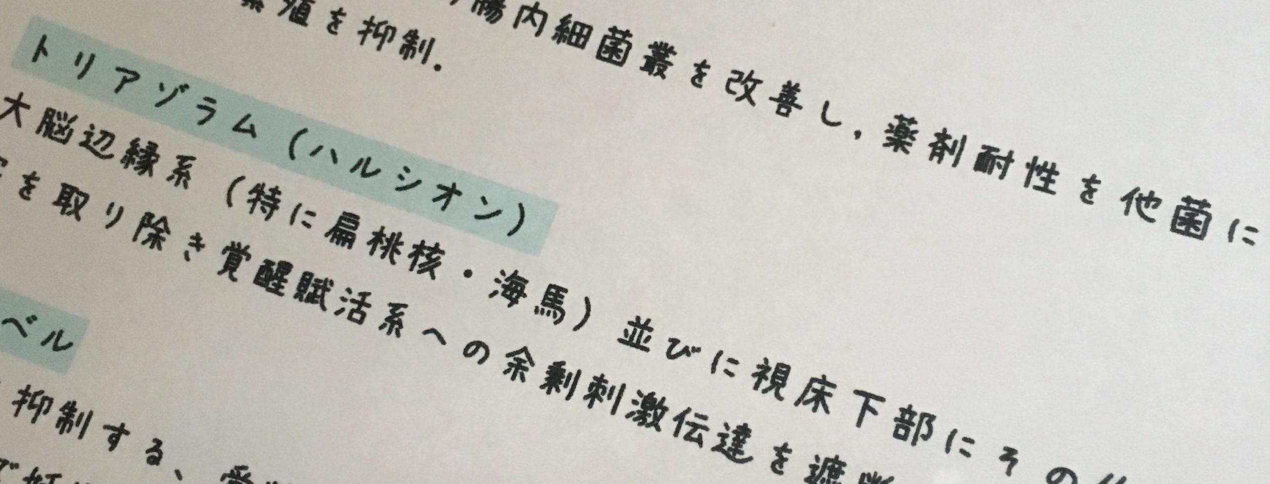 あんず文字で書かれたノート