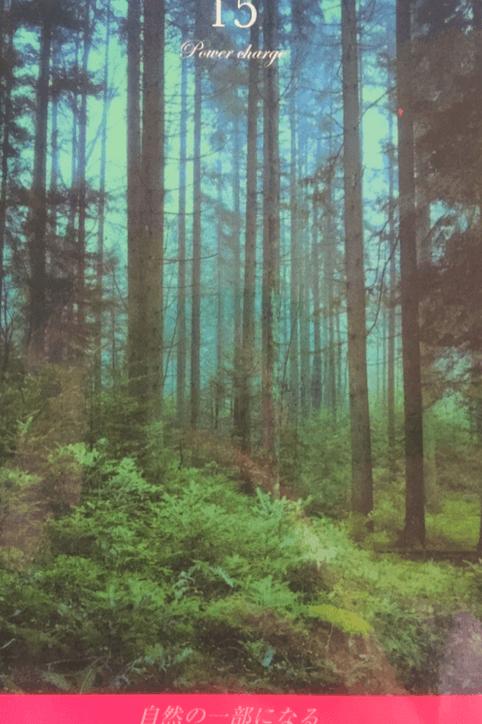 森の一部になる